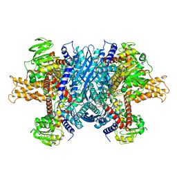 Molmil generated image of 6dhk