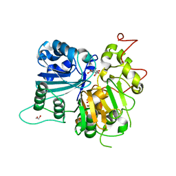 Molmil generated image of 6dih