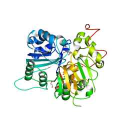 Molmil generated image of 6djj