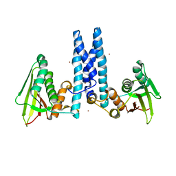 Molmil generated image of 6dk8