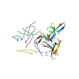 Molmil generated image of 6dr5