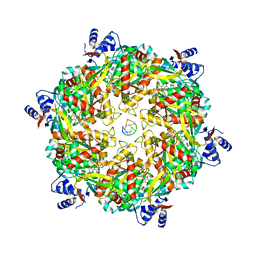 Molmil generated image of 6duq