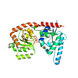 Molmil generated image of 6ejj