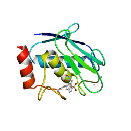 Molmil generated image of 6enm