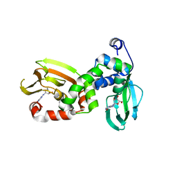 Molmil generated image of 6flo