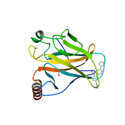 Molmil generated image of 6ggb