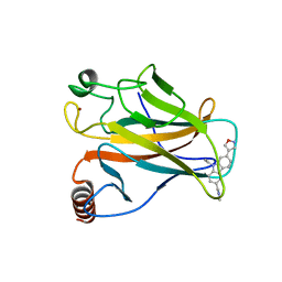Molmil generated image of 6ggd
