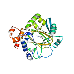 Molmil generated image of 6h4y