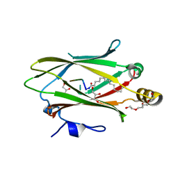 Molmil generated image of 6h6a