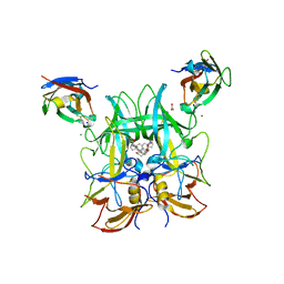 Molmil generated image of 6h6l