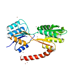 Molmil generated image of 6hb0