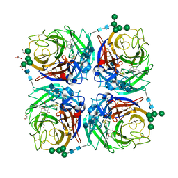Molmil generated image of 6hg5