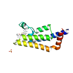 Molmil generated image of 6hib