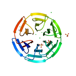 Molmil generated image of 6hrl
