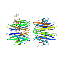 Molmil generated image of 6htn