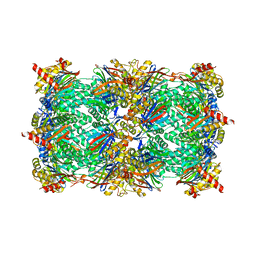 Molmil generated image of 6hvu