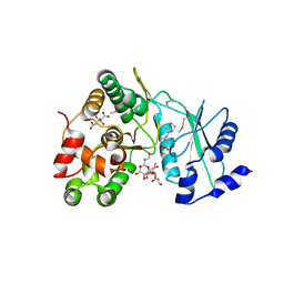 Molmil generated image of 6iy9