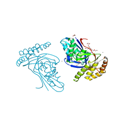 Molmil generated image of 6jbc