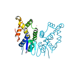 Molmil generated image of 6jre