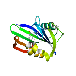 Molmil generated image of 6jvi
