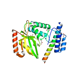 Molmil generated image of 6jzc