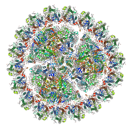 Molmil generated image of 6kif