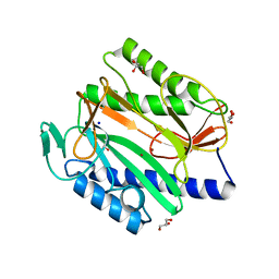 Molmil generated image of 6ksg