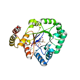 Molmil generated image of 6ky6