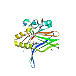 Molmil generated image of 6l9f