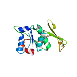 Molmil generated image of 6lhy