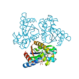 Molmil generated image of 6ln3