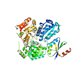 Molmil generated image of 6lpi