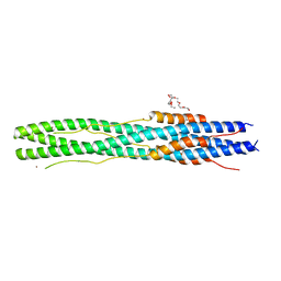 Molmil generated image of 6lxt