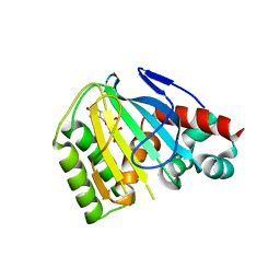 Molmil generated image of 6ms8