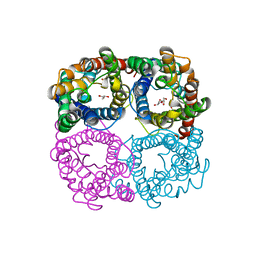 Molmil generated image of 6n1g