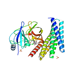 Molmil generated image of 6n4n