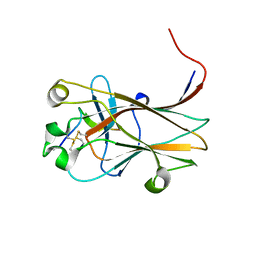 Molmil generated image of 6nk1