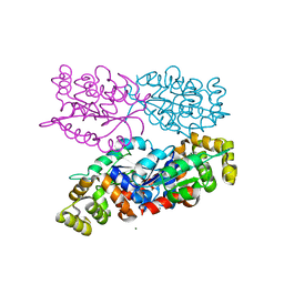 Molmil generated image of 6nk8