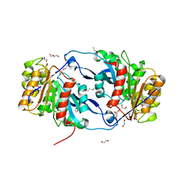 Molmil generated image of 6nkf