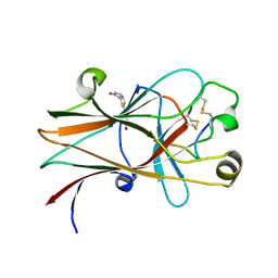 Molmil generated image of 6nkp