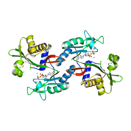 Molmil generated image of 6no2