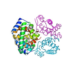 Molmil generated image of 6nq5