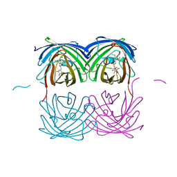 Molmil generated image of 6nqq