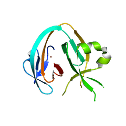 Molmil generated image of 6owu