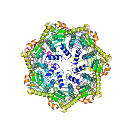 Molmil generated image of 6pbu