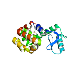 Molmil generated image of 6pgz