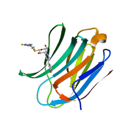 Molmil generated image of 6qgf