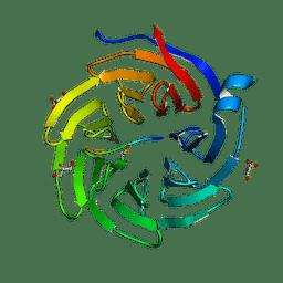 Molmil generated image of 6qtt
