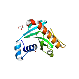 Molmil generated image of 6r1g