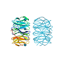 Molmil generated image of 6rfz